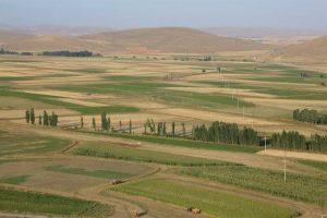 Bayburt Üniversitesi, tarım çalışmaları yürütüyor
