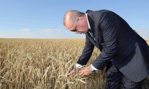 Çiftçilerimizden bir karış toprağı dahi boş bırakmadan ekmeleri-biçmeleri-üretmeleridir.