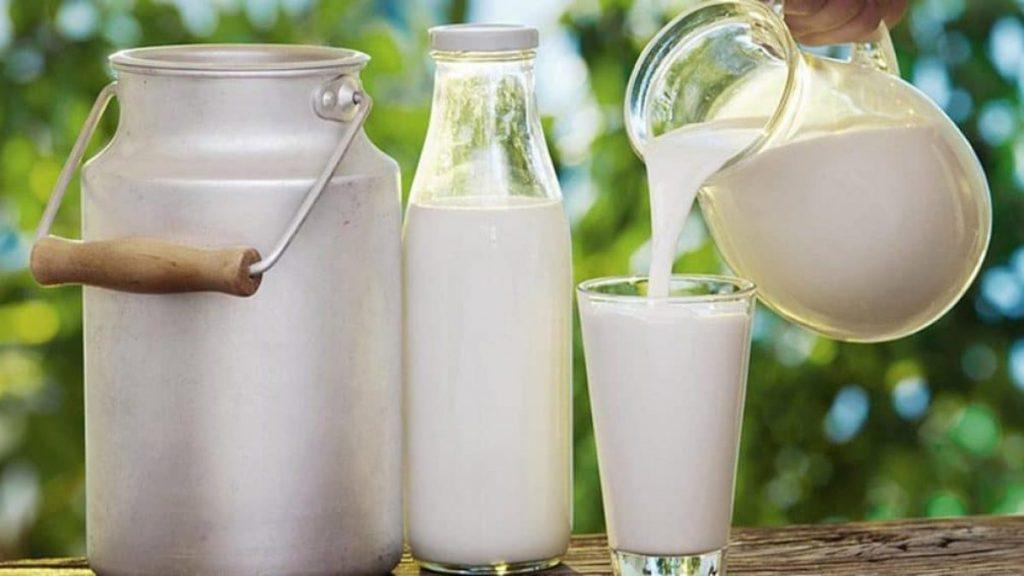 Çiğ süt destekleme esasları belli oldu. Müjde!
