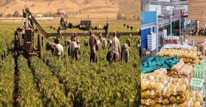 Sanayici üretici üzerinde baskı kuruyor ve Pandemi zamları maliyetleri daha da arttırıyor