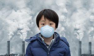 Eko tahribat sürerse gelecekte yeni pandemiler yaşanacak!