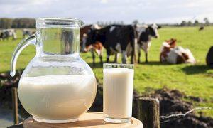 Süt biterse 17 ay sonra et krizi çıkar