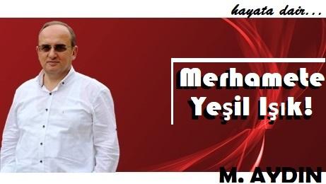 M.Aydın
