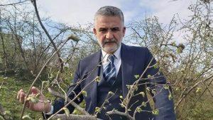 Altınordu ZO Başkanı Akça: Fındıkta Patron…
