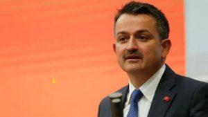 Tarım Bakanı Pakdemirli'den arıcılık destek açıklaması
