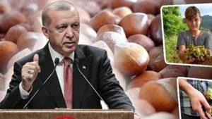 Cumhurbaşkanı Erdoğan'ın bölgeye geldiğinde yapması beklenen fındık fiyatı açıklaması dün akşam katıldığı TV programında yaptı.